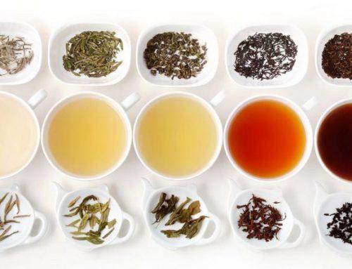 Zsírégető teák